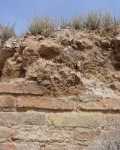بازمانده دیوارهای قلعه آتشگاه کاشمر